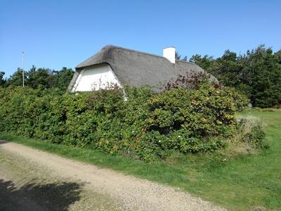 Holiday house in Vedersø Klit - Ulfborg - 06/10895vj