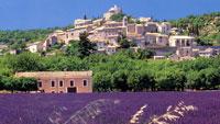Ferienwohnungen in Frankreich und Spanien