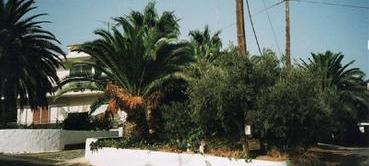 Cottage in Chania - Galatas - Kreta